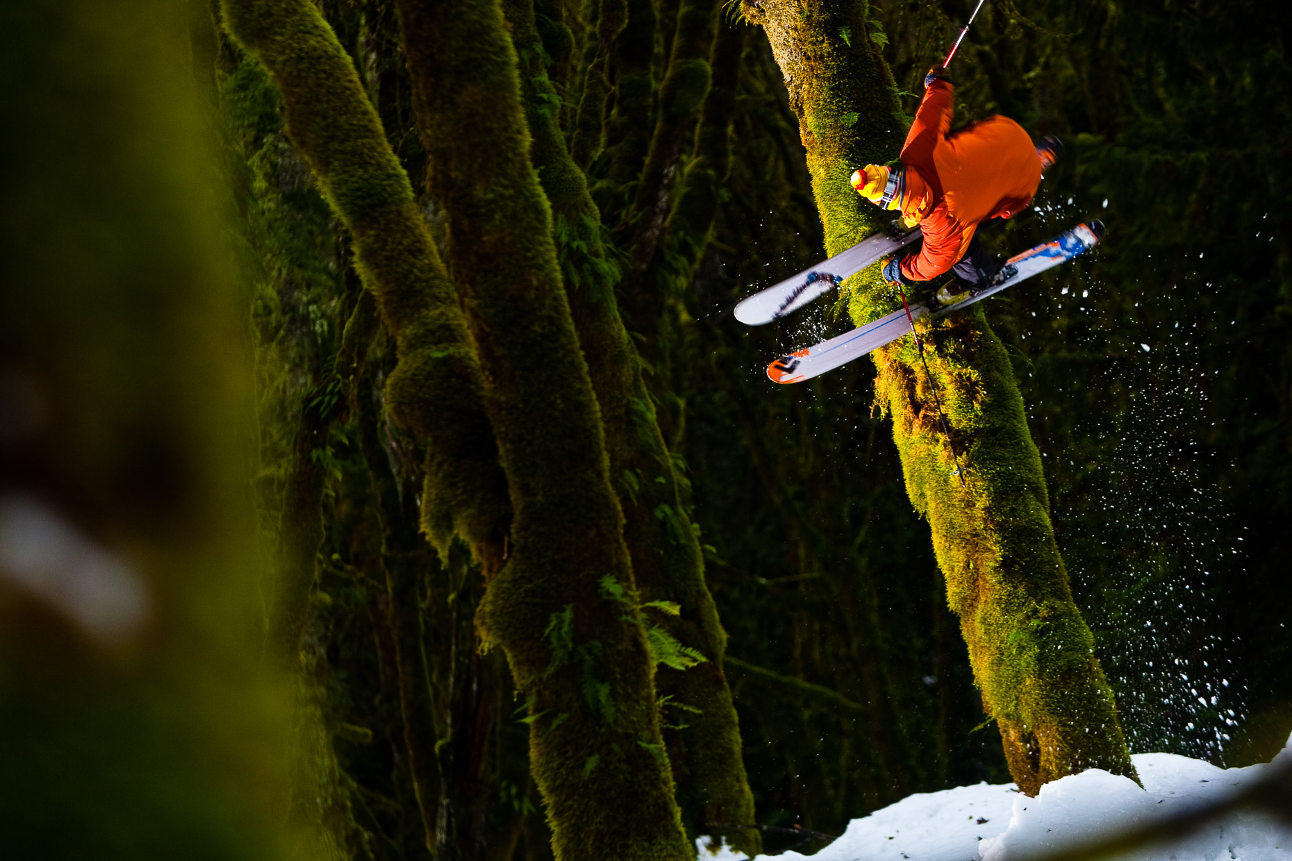 Zack Giffin, Skiing Rainforest, 018_200901111379