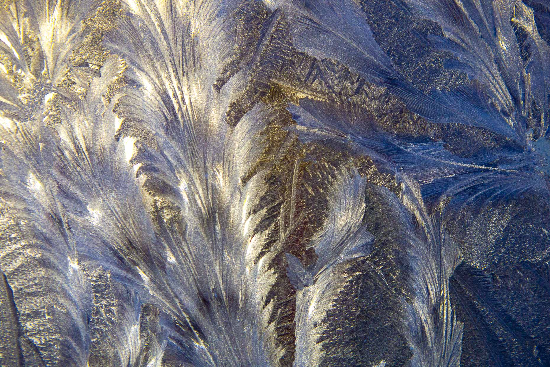 Ice Crystals, 024_201301177462