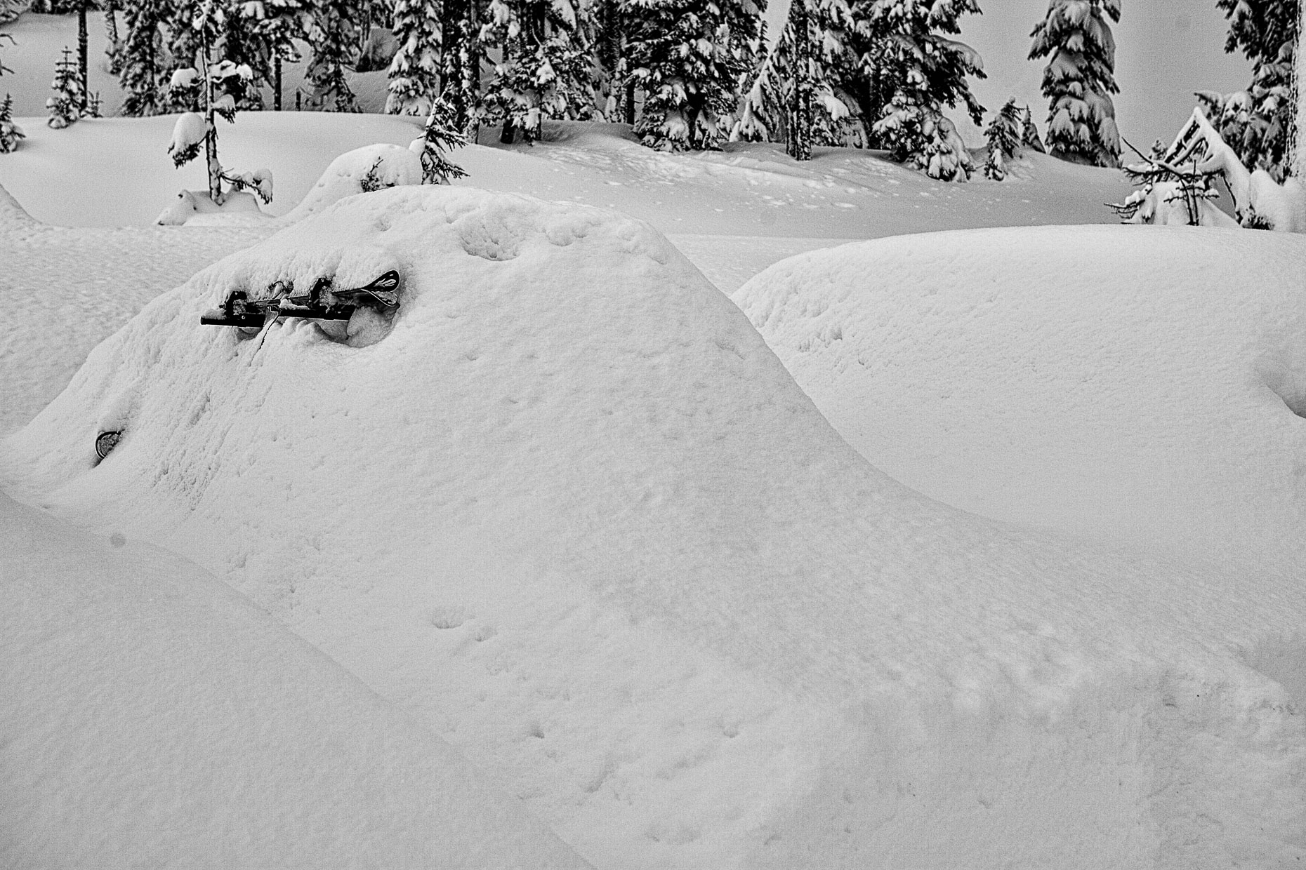 Snowed in, Mt. Baker, 040_20061125-2-Edit